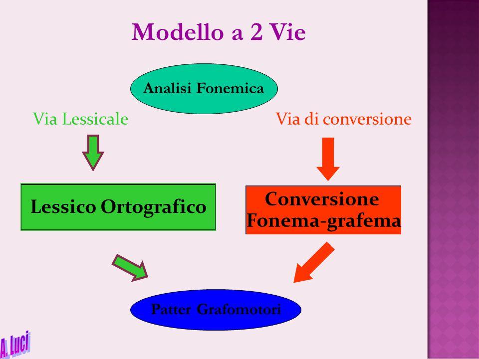 Via Lessicale Via di conversione Conversione Fonema-grafema Lessico Ortografico Analisi Fonemica Patter Grafomotori Modello a 2 Vie