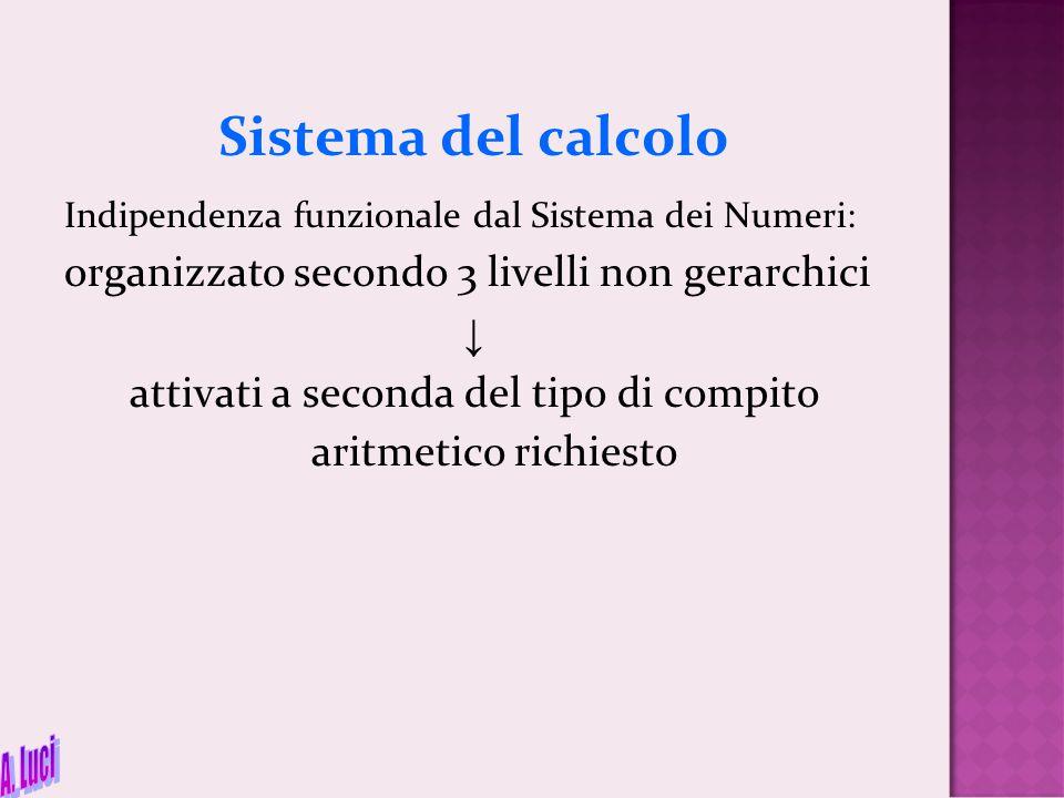 Sistema del calcolo Indipendenza funzionale dal Sistema dei Numeri: organizzato secondo 3 livelli non gerarchici ↓ attivati a seconda del tipo di comp