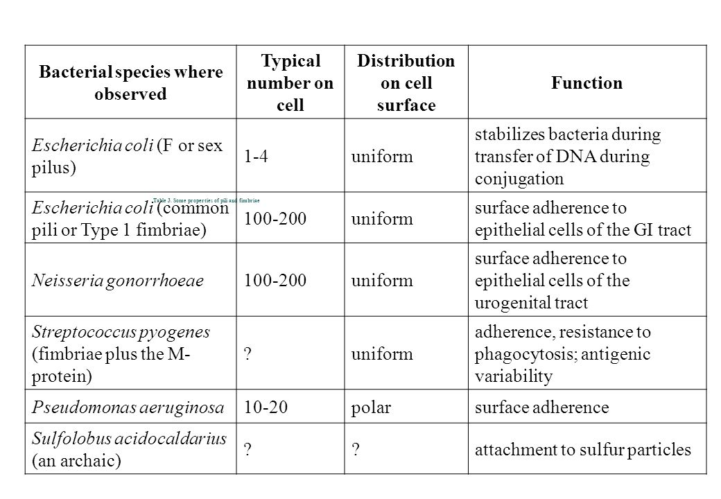 Table 3. Some properties of pili and fimbriae Bacterial species where observed Typical number on cell Distribution on cell surface Function Escherichi