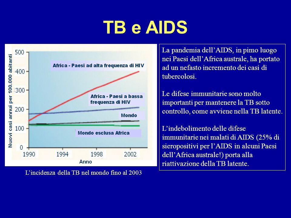 TB e AIDS La pandemia dell'AIDS, in pimo luogo nei Paesi dell'Africa australe, ha portato ad un nefasto incremento dei casi di tubercolosi. Le difese