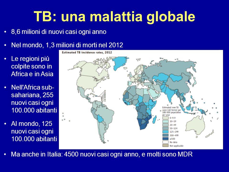 TB: una malattia globale Ma anche in Italia: 4500 nuovi casi ogni anno, e molti sono MDR Le regioni più colpite sono in Africa e in Asia Nell'Africa s