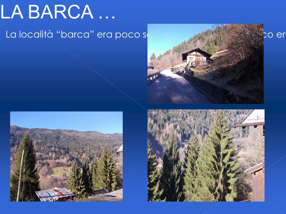 LA BARCA … La località barca era poco sopra Caspeda, ma il bosco era più fitto e ovviamente eravamo più alti.