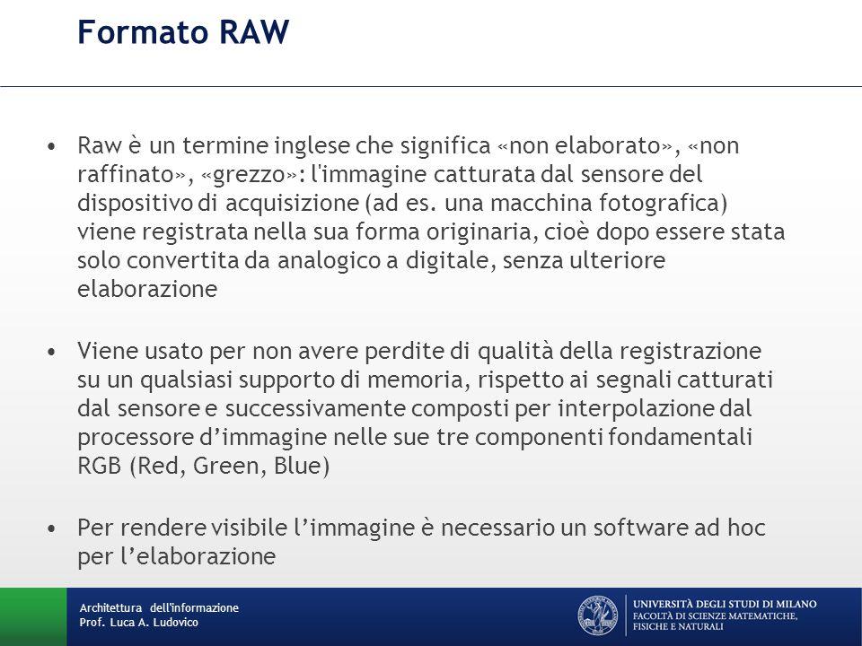 Raw è un termine inglese che significa «non elaborato», «non raffinato», «grezzo»: l'immagine catturata dal sensore del dispositivo di acquisizione (a