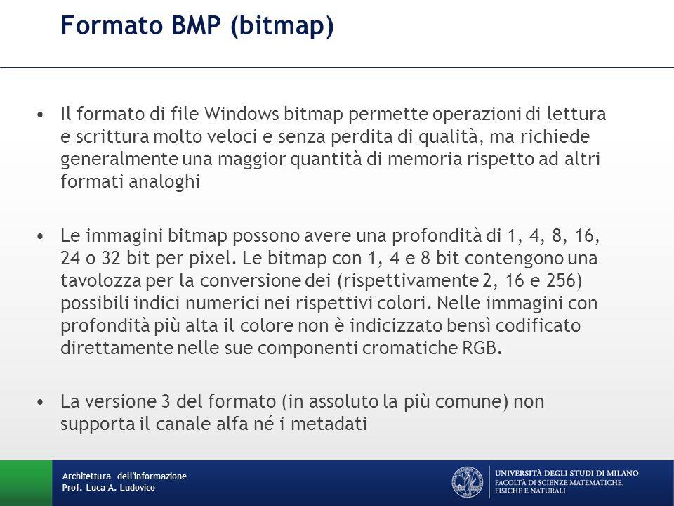 Il formato di file Windows bitmap permette operazioni di lettura e scrittura molto veloci e senza perdita di qualità, ma richiede generalmente una mag