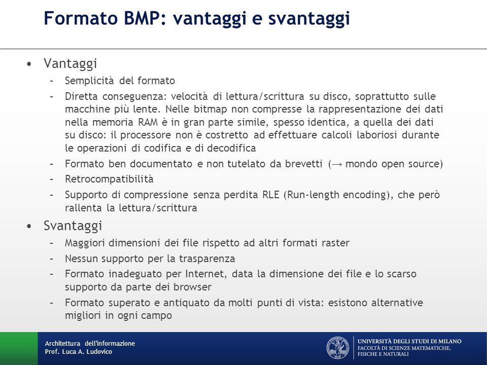 Vantaggi –Semplicità del formato –Diretta conseguenza: velocità di lettura/scrittura su disco, soprattutto sulle macchine più lente. Nelle bitmap non