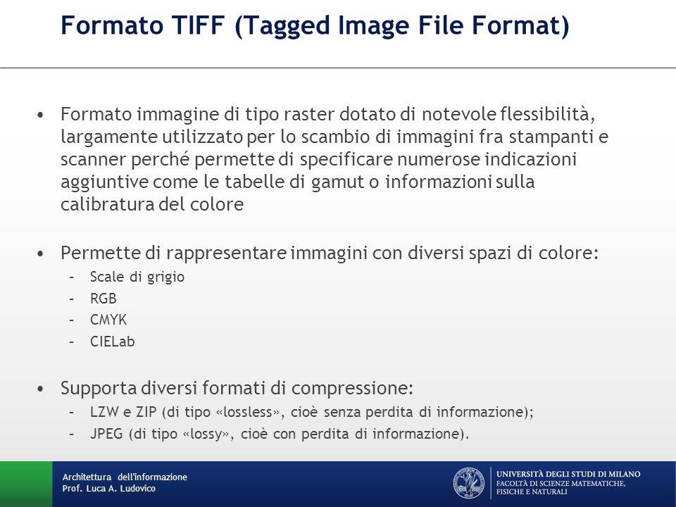 Formato immagine di tipo raster dotato di notevole flessibilità, largamente utilizzato per lo scambio di immagini fra stampanti e scanner perché perme
