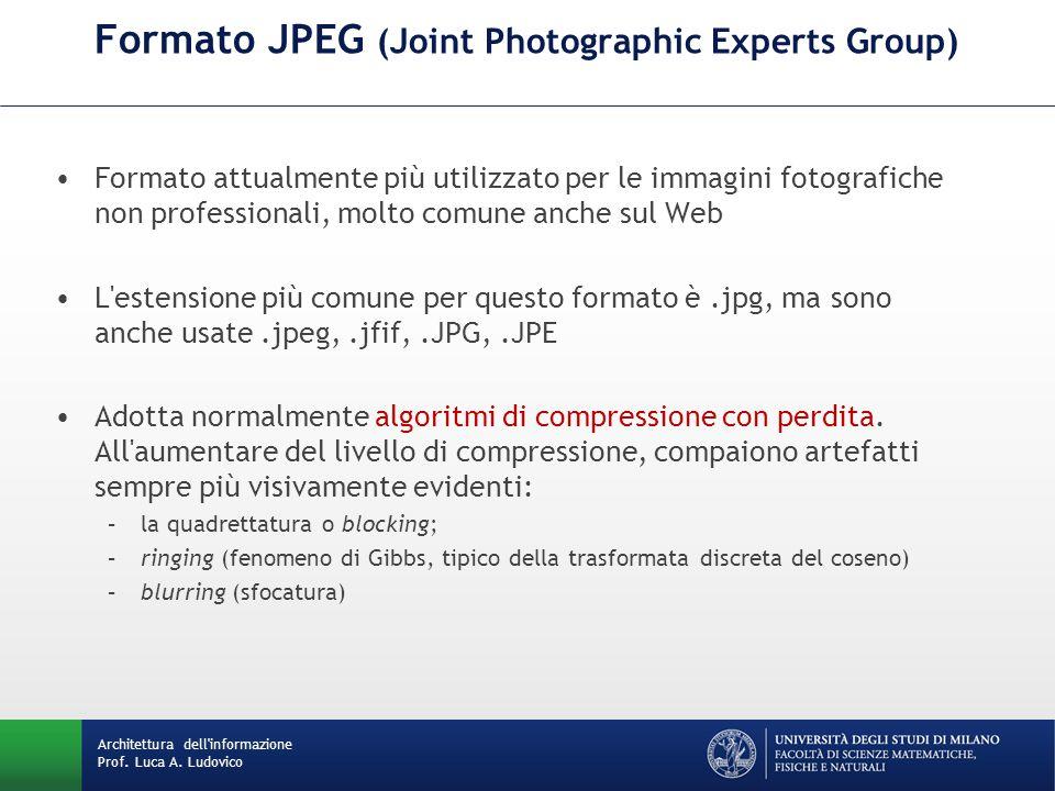Formato attualmente più utilizzato per le immagini fotografiche non professionali, molto comune anche sul Web L'estensione più comune per questo forma