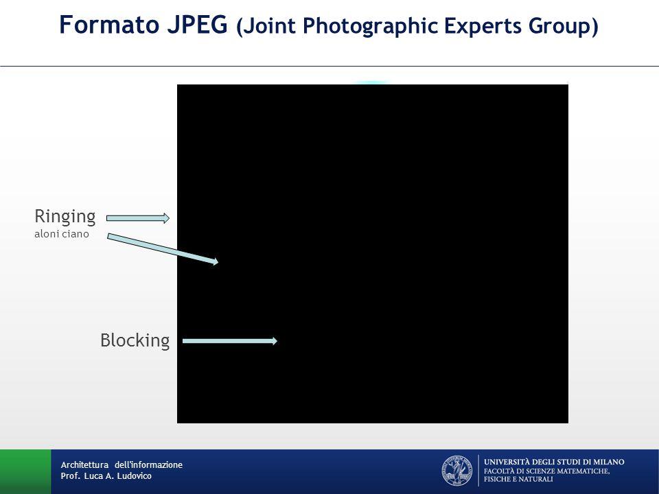 Ringing aloni ciano Blocking Formato JPEG (Joint Photographic Experts Group) Architettura dell'informazione Prof. Luca A. Ludovico