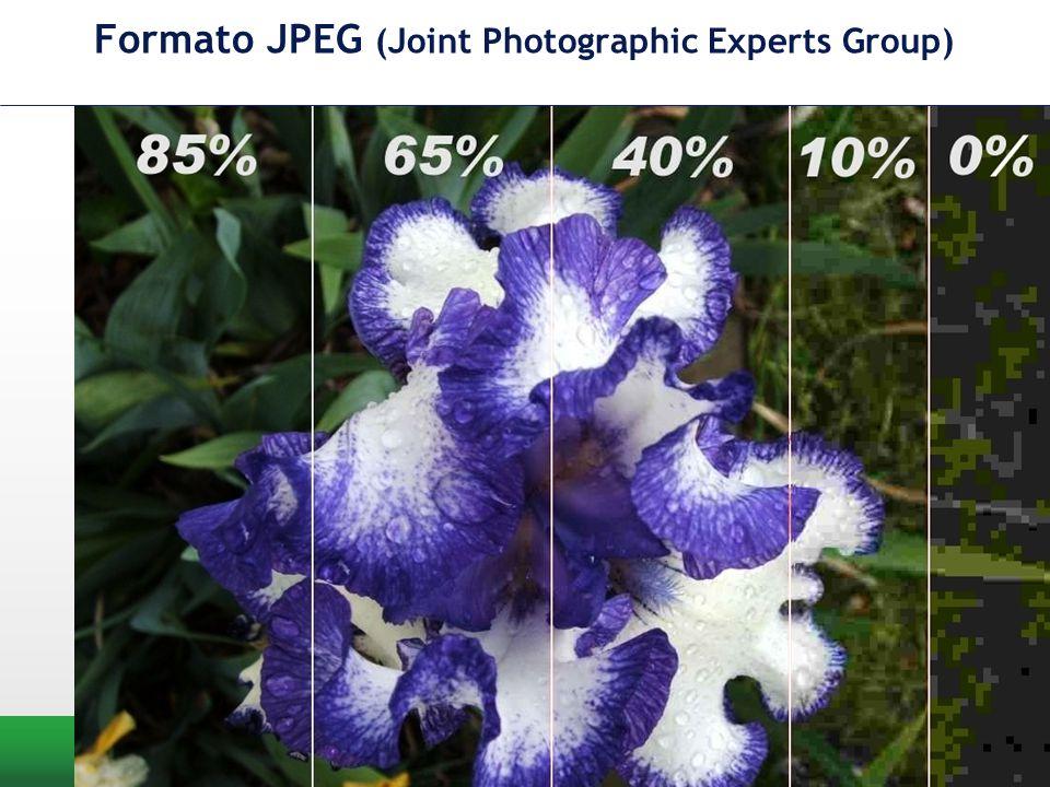 Formato JPEG (Joint Photographic Experts Group) Architettura dell'informazione Prof. Luca A. Ludovico