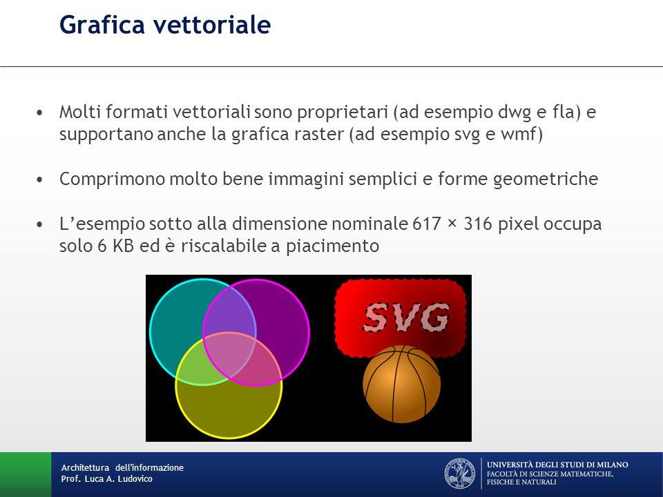 Molti formati vettoriali sono proprietari (ad esempio dwg e fla) e supportano anche la grafica raster (ad esempio svg e wmf) Comprimono molto bene imm