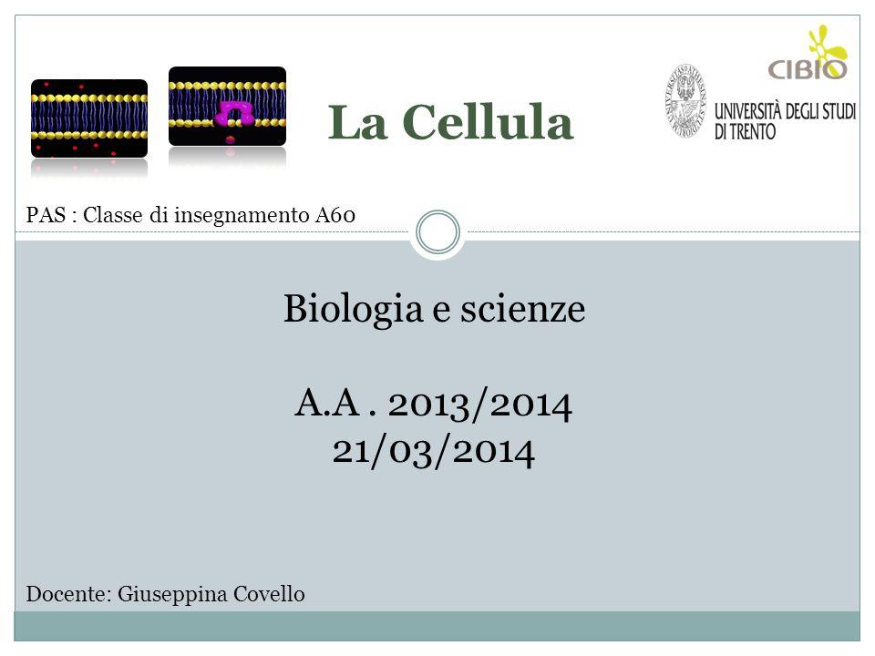 Docente: Giuseppina Covello Biologia e scienze A.A. 2013/2014 21/03/2014 PAS : Classe di insegnamento A60 La Cellula