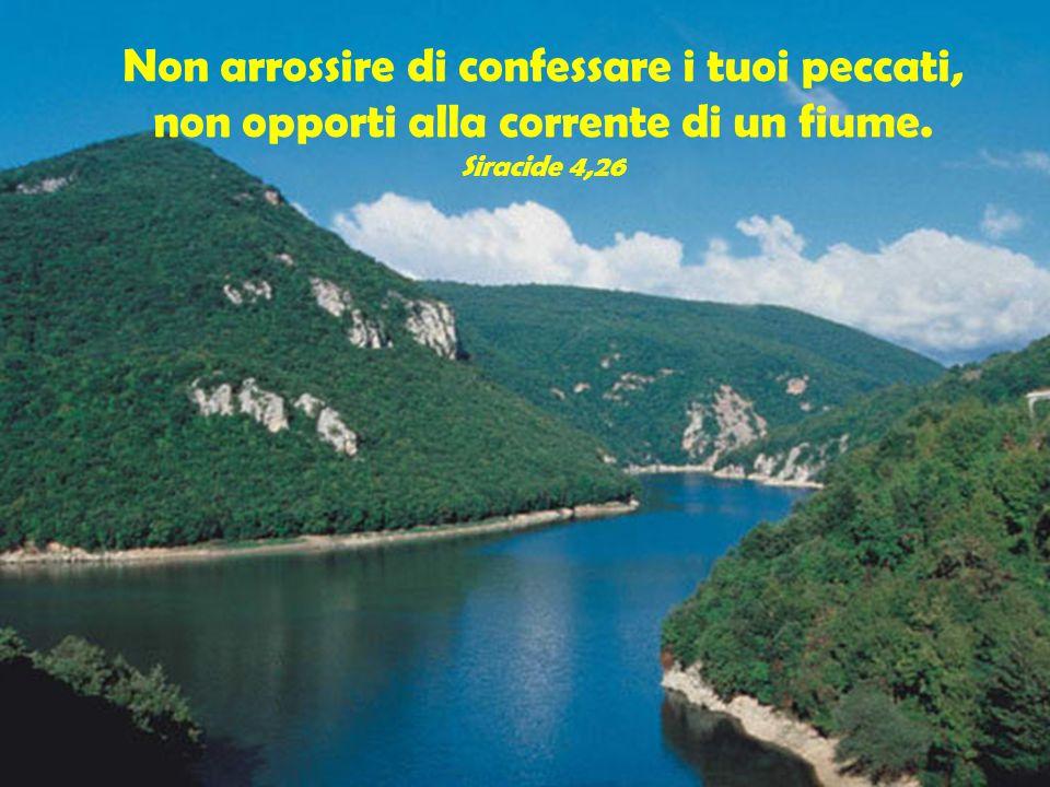 Non arrossire di confessare i tuoi peccati, non opporti alla corrente di un fiume. Siracide 4,26