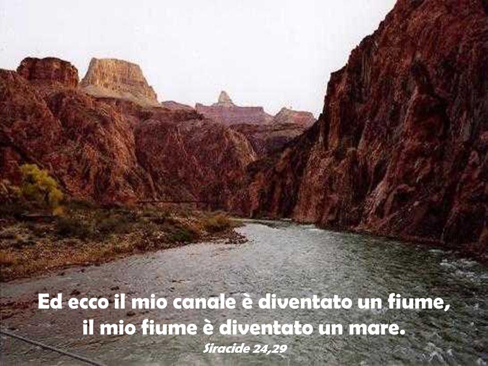 Ed ecco il mio canale è diventato un fiume, il mio fiume è diventato un mare. Siracide 24,29