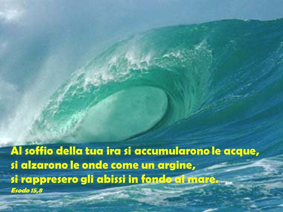 Al soffio della tua ira si accumularono le acque, si alzarono le onde come un argine, si rappresero gli abissi in fondo al mare. Esodo 15,8