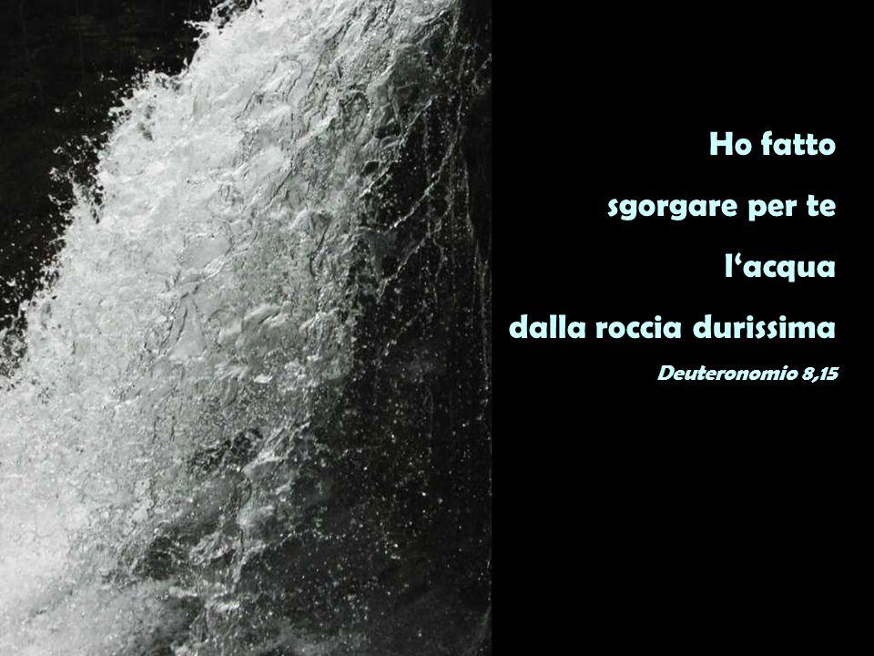 Ho fatto sgorgare per te l'acqua dalla roccia durissima Deuteronomio 8,15