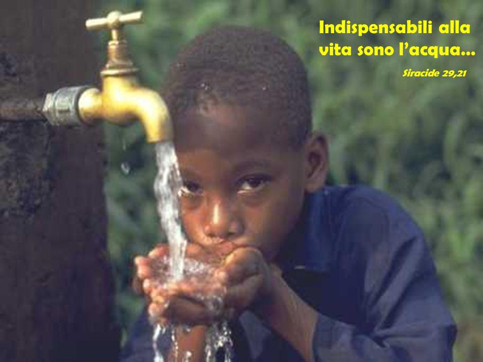 Indispensabili alla vita sono l'acqua… Siracide 29,21