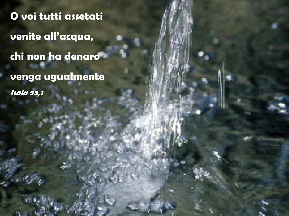 O voi tutti assetati venite all'acqua, chi non ha denaro venga ugualmente Isaia 55,1