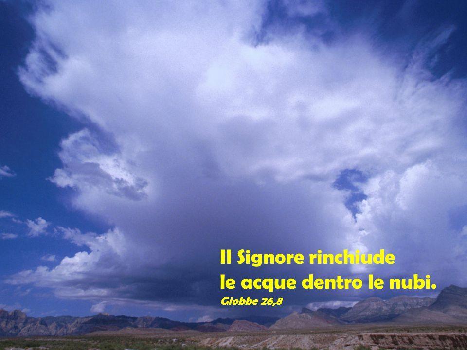 Ridusse la tempesta alla calma, tacquero i flutti del mare. Salmo 106