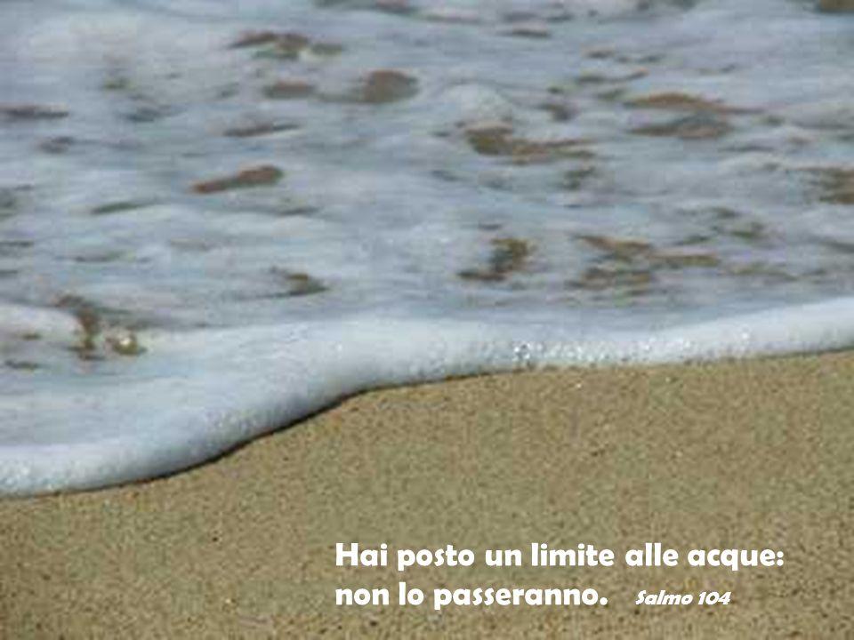 Hai posto un limite alle acque: non lo passeranno. Salmo 104