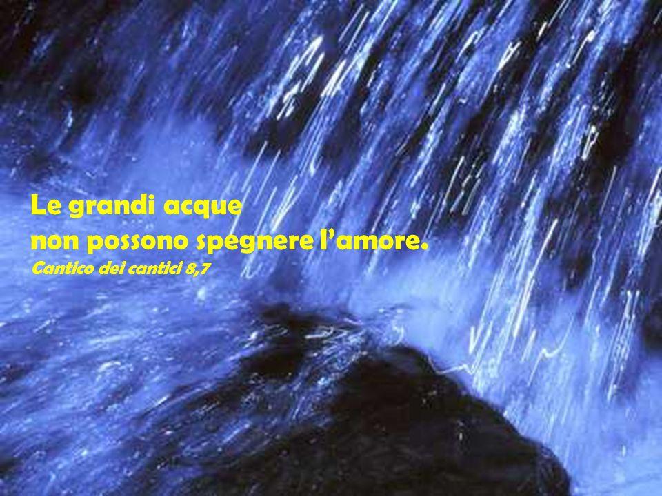 Le grandi acque non possono spegnere l'amore. Cantico dei cantici 8,7