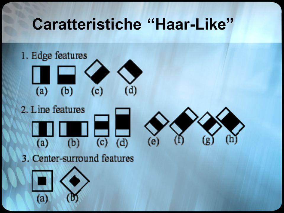 Caratteristiche Haar-Like