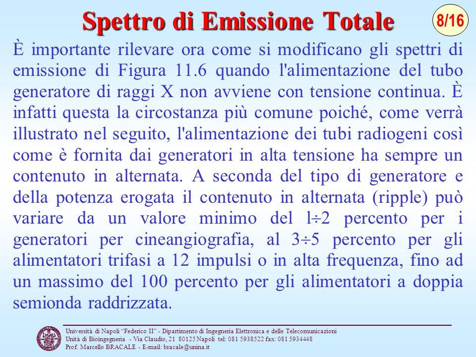 """Università di Napoli """"Federico II"""" - Dipartimento di Ingegneria Elettronica e delle Telecomunicazioni Unità di Bioingegneria - Via Claudio, 21 80125 N"""