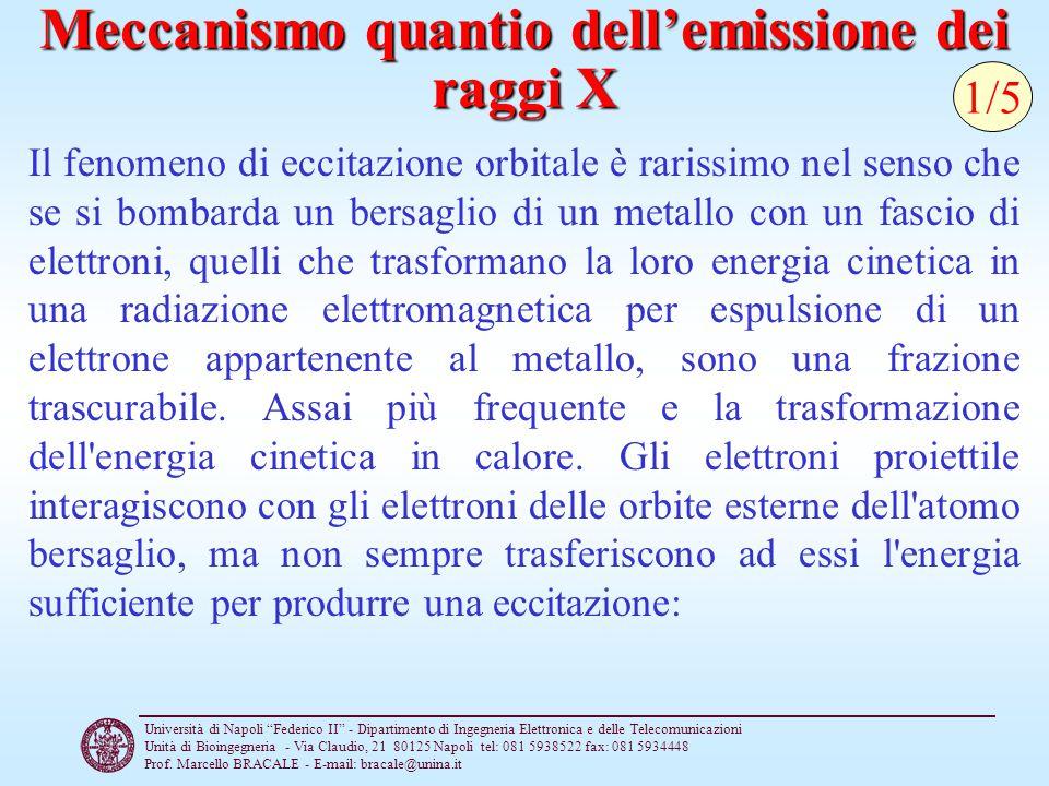 Università di Napoli Federico II - Dipartimento di Ingegneria Elettronica e delle Telecomunicazioni Unità di Bioingegneria - Via Claudio, 21 80125 Napoli tel: 081 5938522 fax: 081 5934448 Prof.