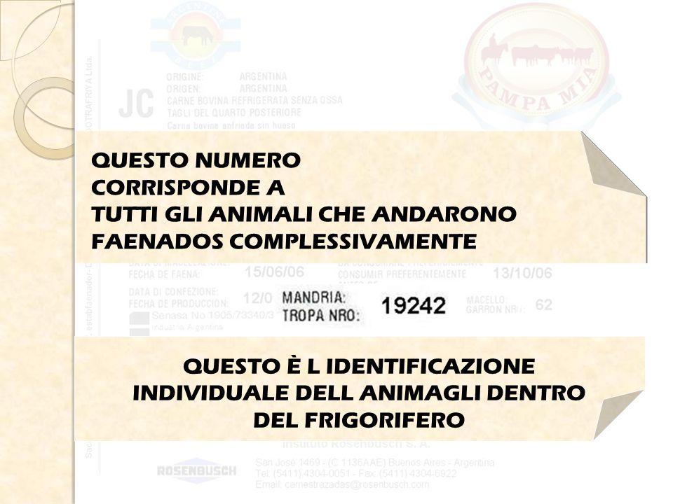 QUESTO NUMERO CORRISPONDE A TUTTI GLI ANIMALI CHE ANDARONO FAENADOS COMPLESSIVAMENTE QUESTO È L IDENTIFICAZIONE INDIVIDUALE DELL ANIMAGLI DENTRO DEL FRIGORIFERO