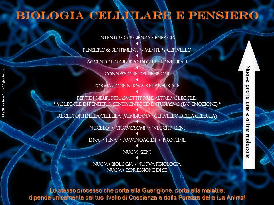Biologia cellulare e Pensiero Intento  Coscienza  Energia  Pensiero & Sentimenti  Mente  Cervello  accende un gruppo di cellule neurali  connes