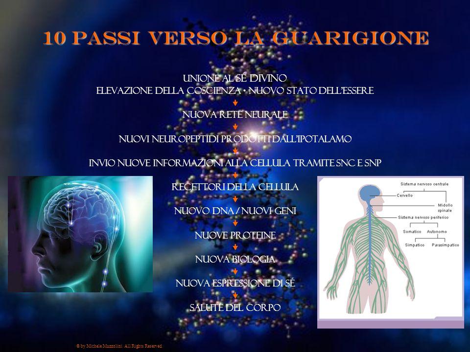 10 passi verso la Guarigione Unione al Sé Divino Elevazione della Coscienza  Nuovo Stato dell'Essere  nuova rete neurale  nuovi neuropeptidi prodot