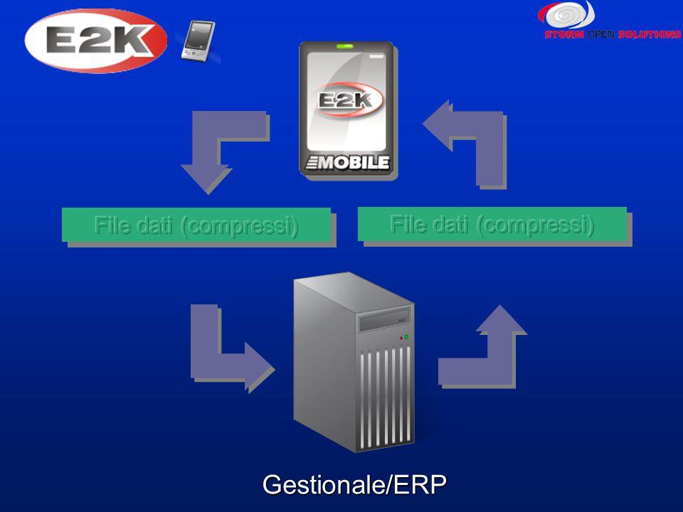 Gestionale/ERP