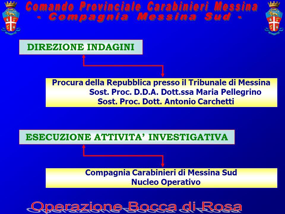 DIREZIONE INDAGINI Procura della Repubblica presso il Tribunale di Messina Sost.