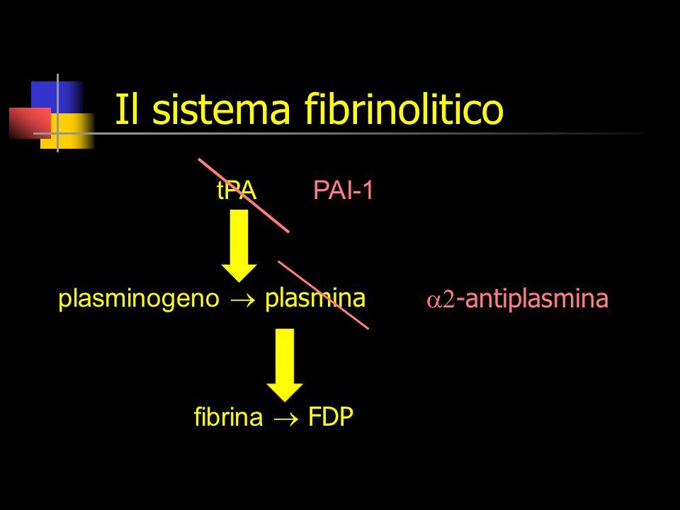 Il sistema fibrinolitico tPA plasminogeno  plasmina fibrina  FDP PAI-1  -antiplasmina