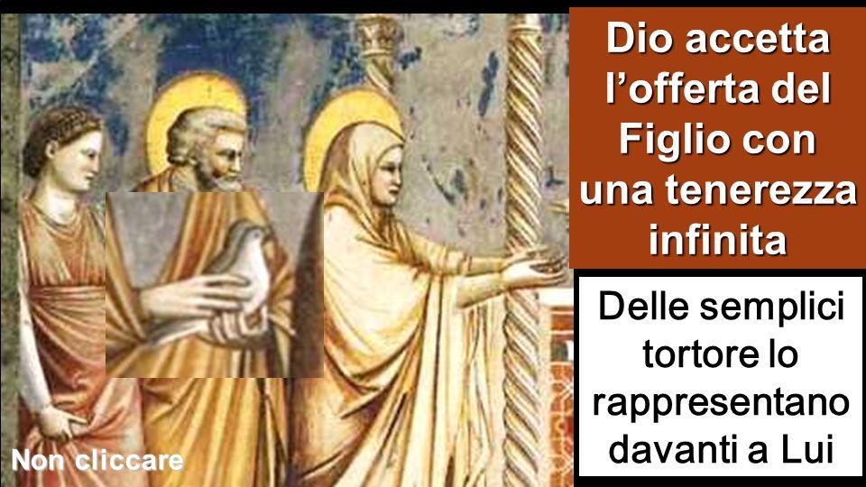 Dio accetta l'offerta del Figlio con una tenerezza infinita Delle semplici tortore lo rappresentano davanti a Lui Non cliccare