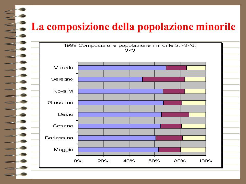La composizione della popolazione minorile