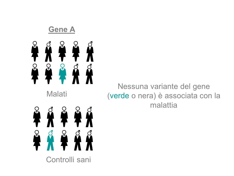 Gene A Malati Controlli sani Nessuna variante del gene (verde o nera) è associata con la malattia