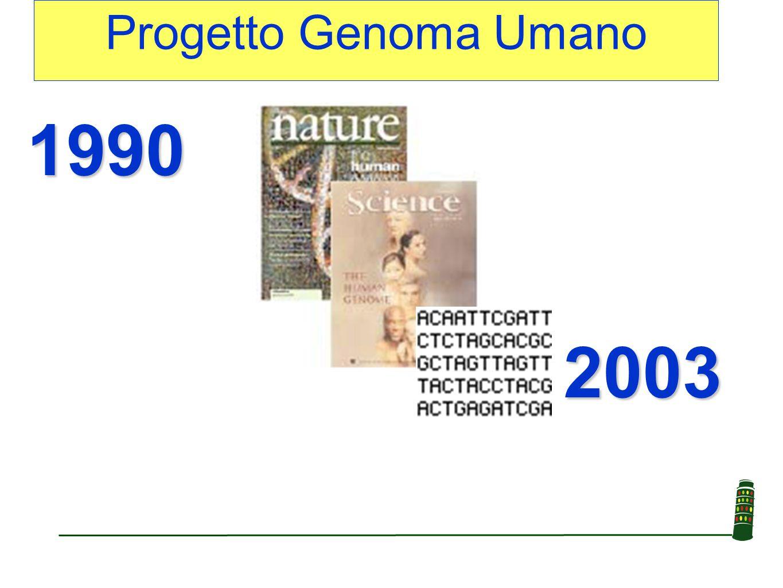 Genoma L'insieme di tutte le molecole di DNA presenti nel nucleo di ogni cellula Nell'uomo: 44 cromosomi autosomici 2 cromosomi sessuali