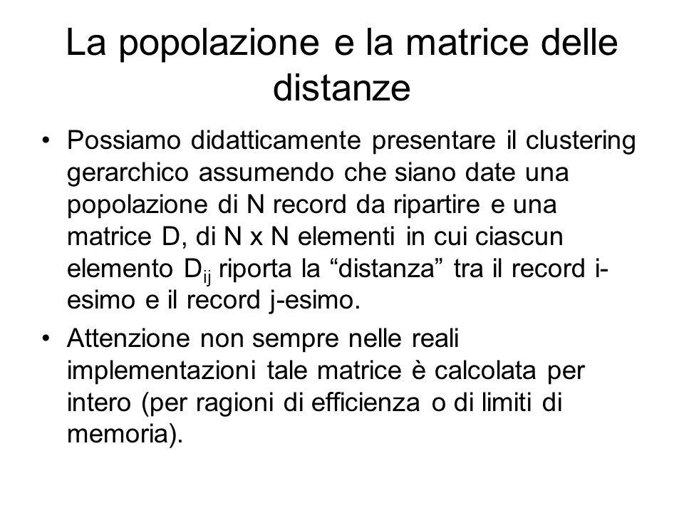 La popolazione e la matrice delle distanze Possiamo didatticamente presentare il clustering gerarchico assumendo che siano date una popolazione di N record da ripartire e una matrice D, di N x N elementi in cui ciascun elemento D ij riporta la distanza tra il record i- esimo e il record j-esimo.