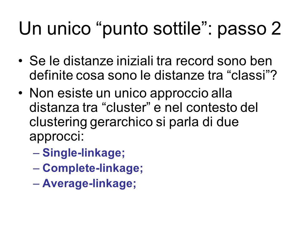 """Un unico """"punto sottile"""": passo 2 Se le distanze iniziali tra record sono ben definite cosa sono le distanze tra """"classi""""? Non esiste un unico approcc"""