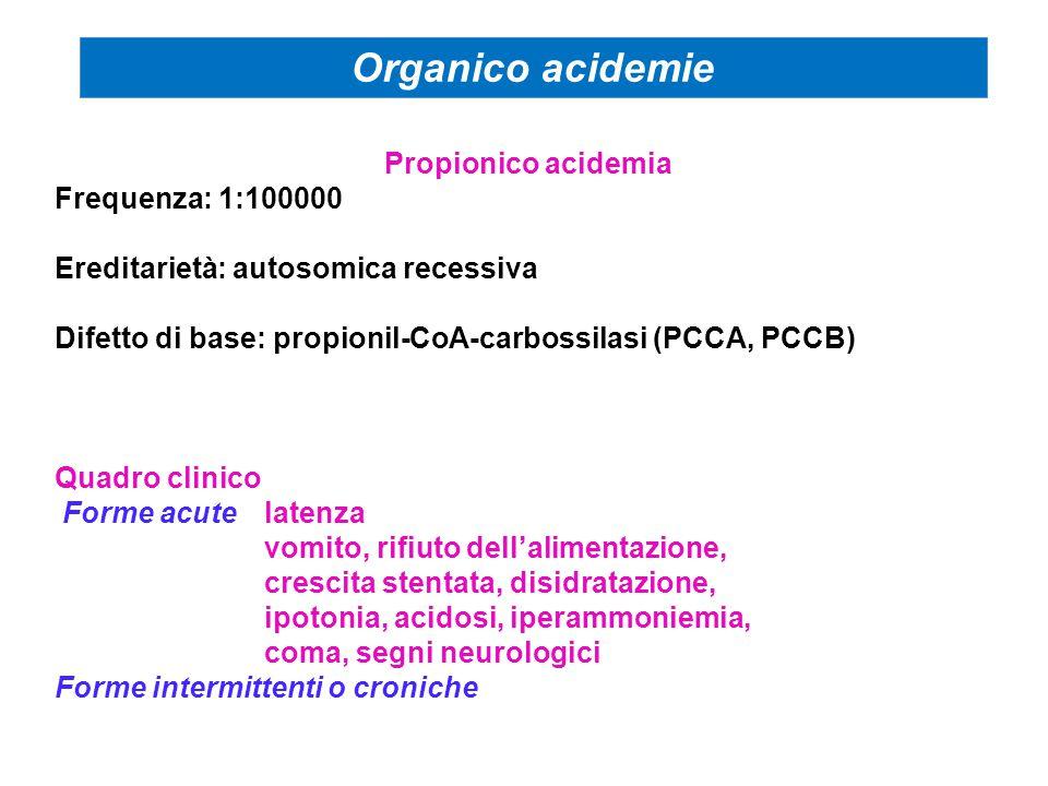 Propionico acidemia Frequenza: 1:100000 Ereditarietà: autosomica recessiva Difetto di base: propionil-CoA-carbossilasi (PCCA, PCCB) Quadro clinico Forme acutelatenza vomito, rifiuto dell'alimentazione, crescita stentata, disidratazione, ipotonia, acidosi, iperammoniemia, coma, segni neurologici Forme intermittenti o croniche Organico acidemie