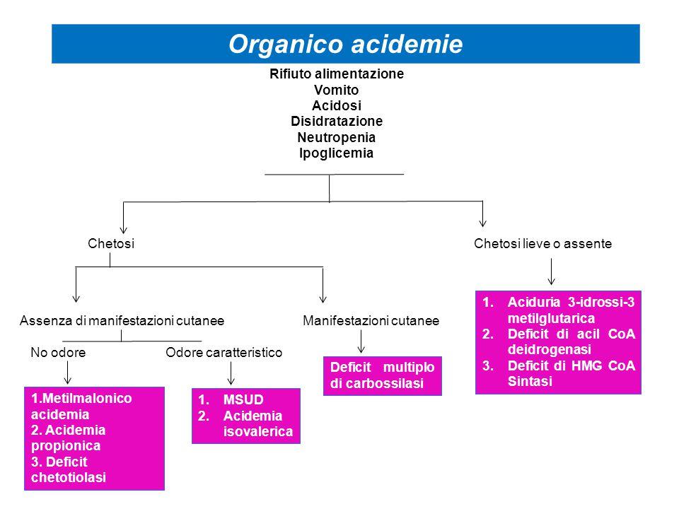 Reidratazione Correzione acidosi parziale bicarbonato per os o in vena Carnitina Vitamine Insulina Terapia medica iperammonemia Dialisi Nutrizione parenterale ipercalorica Sospensione intake proteico pazienti in stato grave pH < 7.10 - HCO 3 < 10 Disidratazione > 10% Ammoniemia > 400 Acido lattico aumentato ipo- iperglicemia ipocalcemia leucotrombopenia