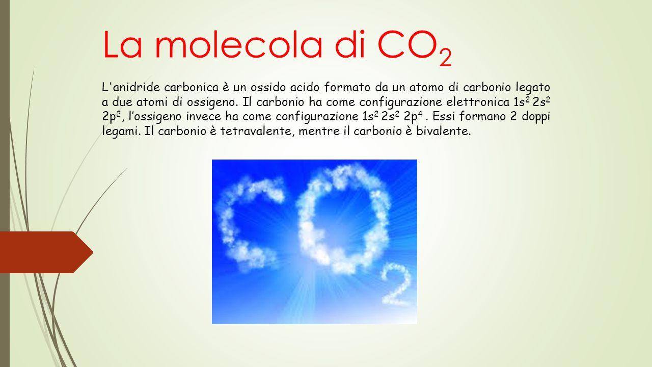 La molecola di CO 2 L'anidride carbonica è un ossido acido formato da un atomo di carbonio legato a due atomi di ossigeno. Il carbonio ha come configu