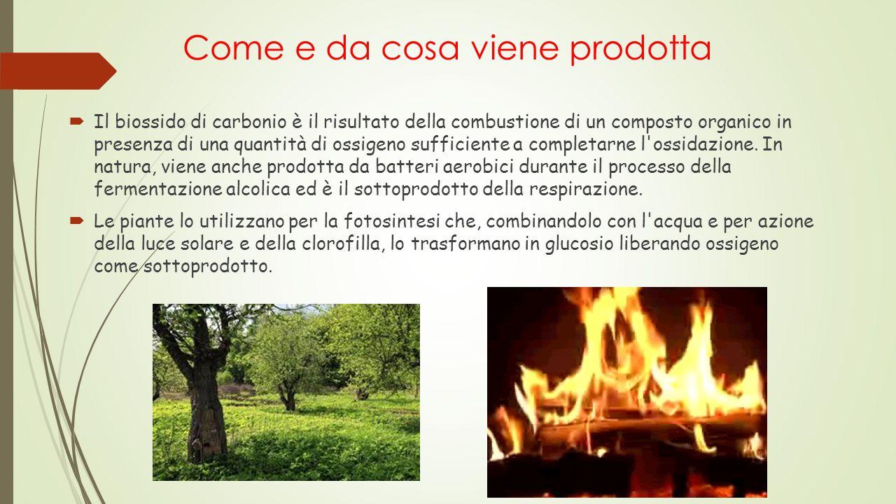 Come e da cosa viene prodotta  Il biossido di carbonio è il risultato della combustione di un composto organico in presenza di una quantità di ossige