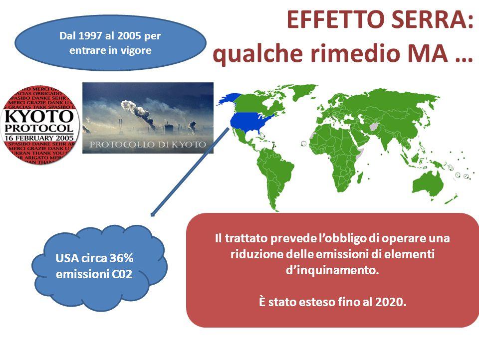 EFFETTO SERRA: qualche rimedio MA … USA circa 36% emissioni C02 Il trattato prevede l'obbligo di operare una riduzione delle emissioni di elementi d'i