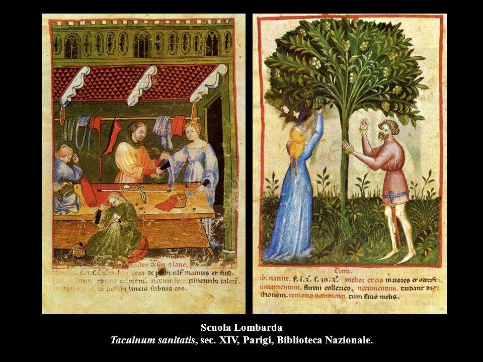 Scuola Lombarda Tacuinum sanitatis, sec. XIV, Parigi, Biblioteca Nazionale.