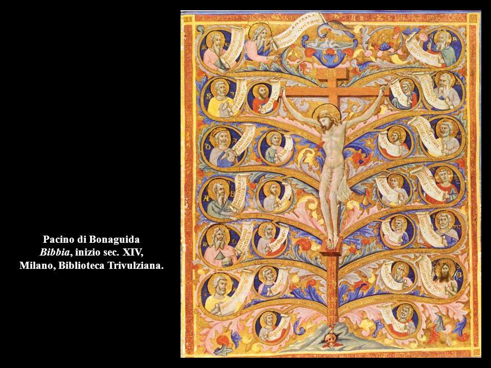 Pacino di Bonaguida Bibbia, inizio sec. XIV, Milano, Biblioteca Trivulziana.