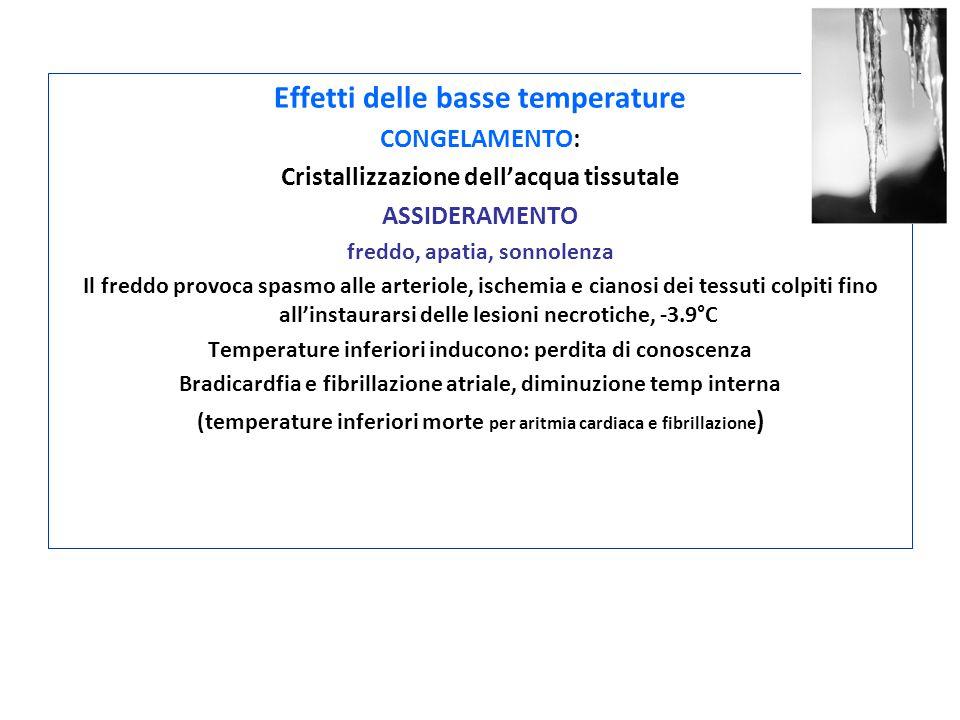 Effetti delle basse temperature CONGELAMENTO: Cristallizzazione dell'acqua tissutale ASSIDERAMENTO freddo, apatia, sonnolenza Il freddo provoca spasmo