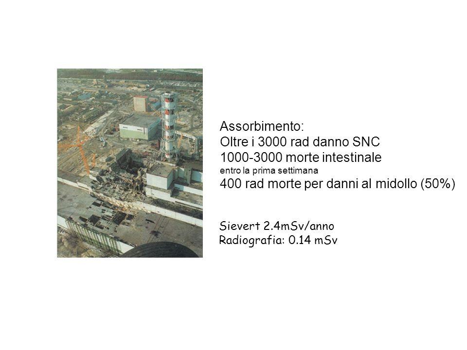Assorbimento: Oltre i 3000 rad danno SNC 1000-3000 morte intestinale entro la prima settimana 400 rad morte per danni al midollo (50%) Sievert 2.4mSv/