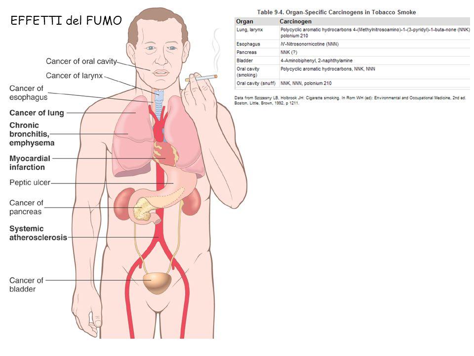 EFFETTI del FUMO