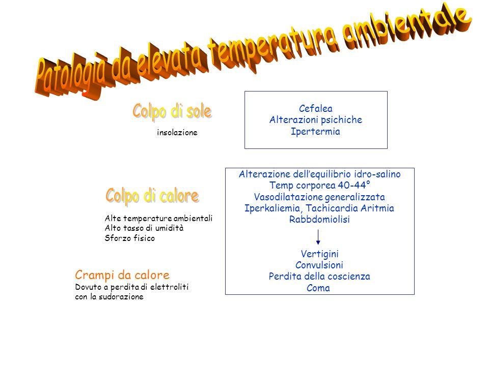 Cefalea Alterazioni psichiche Ipertermia Alterazione dell'equilibrio idro-salino Temp corporea 40-44° Vasodilatazione generalizzata Iperkaliemia, Tach